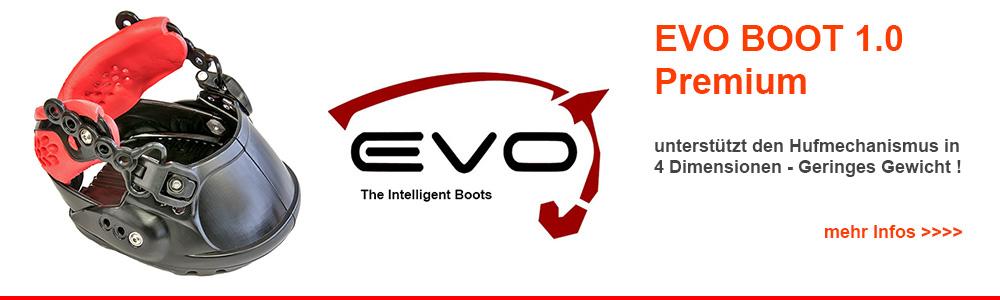 EVO BOOT1